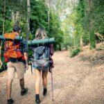 Turismo y sustentabilidad: Cuatro empresas obtiene el Sello S en las regiones de O´Higgins y Maule